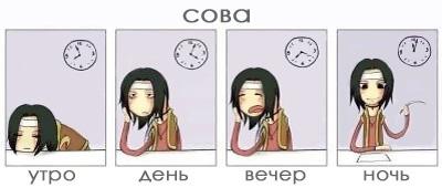 http://diano4ka.ru/sms/sova.jpg